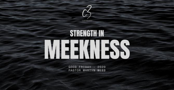 Strength in Meekness