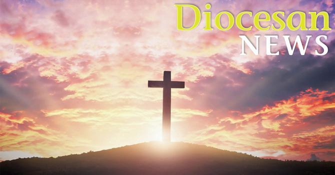 Diocesan News Online image