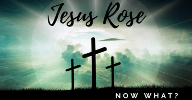 Jesus Rose. Now What?