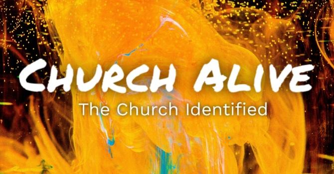 Church Alive Prt 5