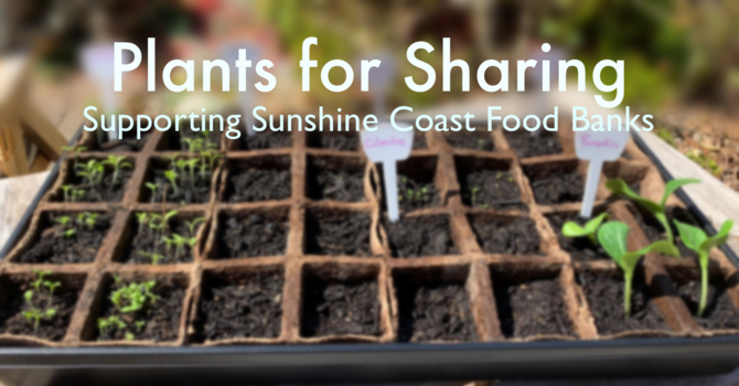 Plants for Sharing... image