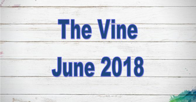 June 2018 Vine image