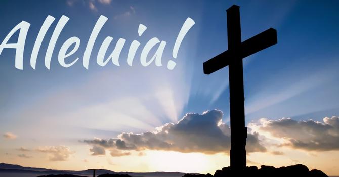 April 26th - Bulletin and Sermon image