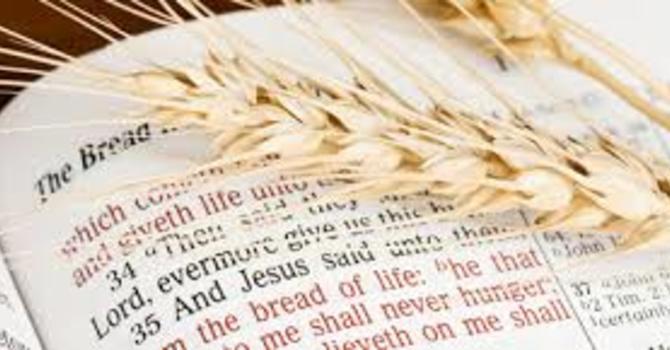 Sunday Liturgy - English