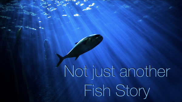 Not Just Another Fish Story