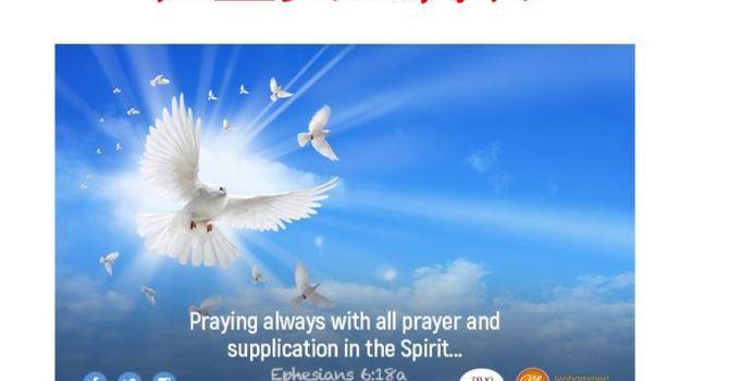 在圣灵里祷告