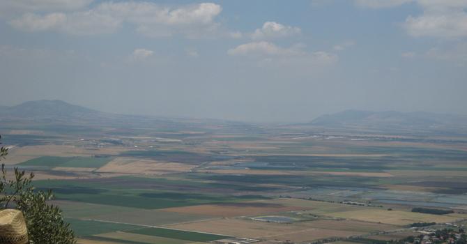 Naboth's Vineyard image