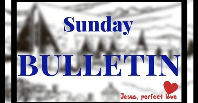 Bulletin - February 26, 2017 image