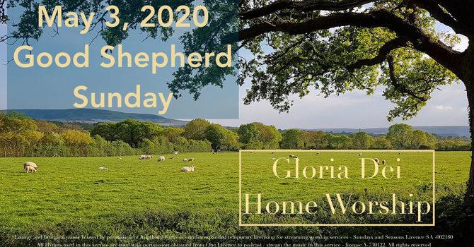 Good Shepherd Sunday, May 3  image