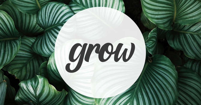GROW: Summer Sessions