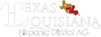 Texas Louisiana Hispanic District