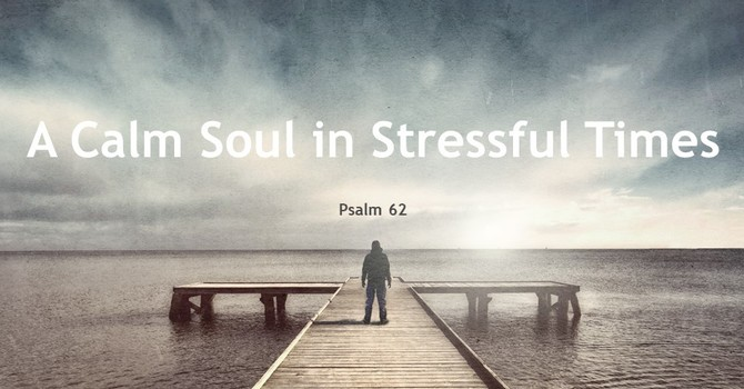 A Calm Soul in Stressful Times image