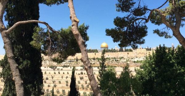Jerusalem Sunday