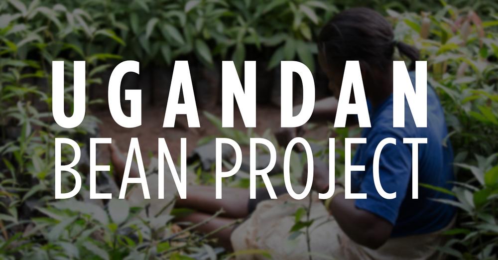 Ugandan Bean Project