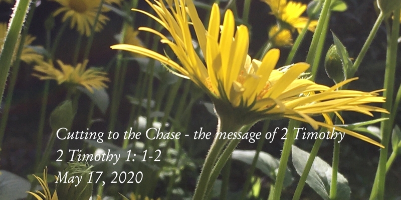 Cutting to the Chase - the message of 2 Timothy