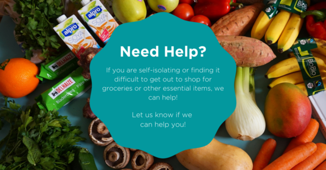 Need Help With Your Grocery Shopping? image