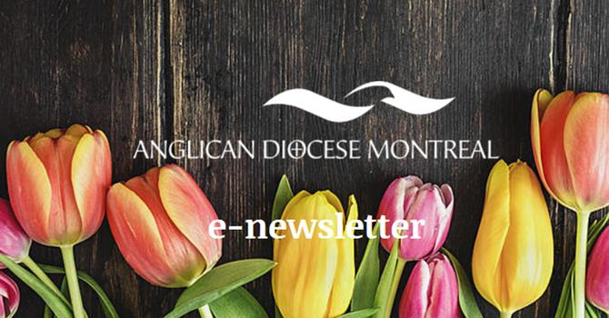 COMPANION DIOCESE NEWS image