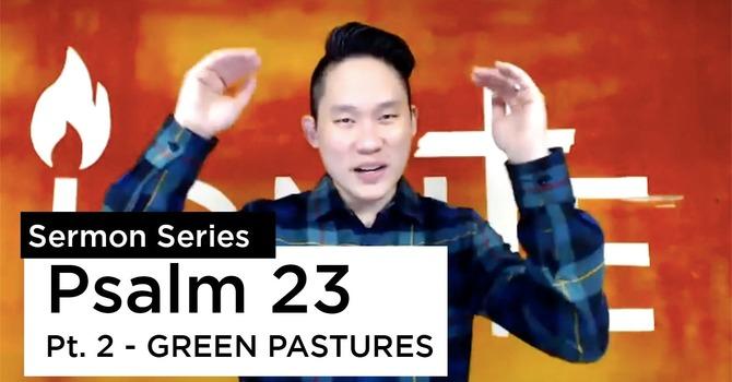 Psalms 23:2 | Green Pastures