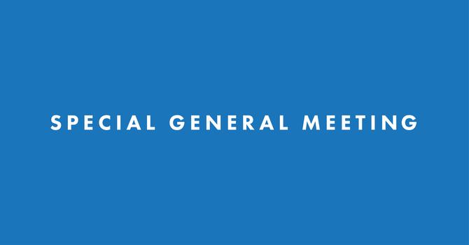 Special General Meeting: Vote