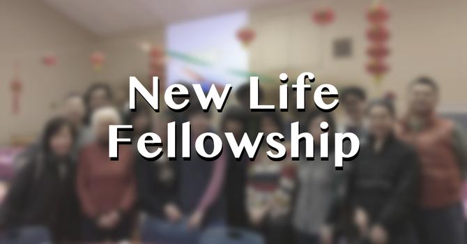 New Life Fellowship