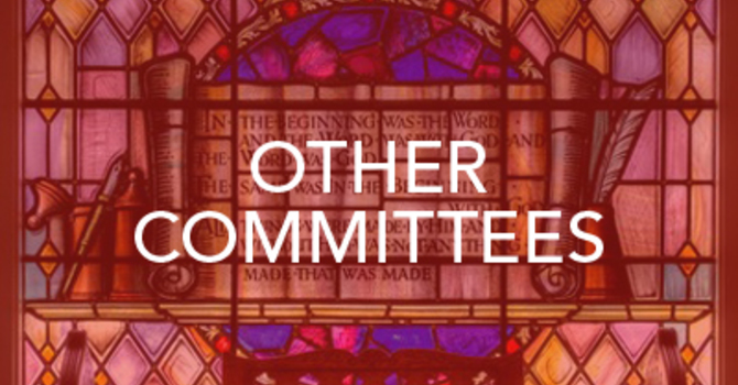 Other Committees