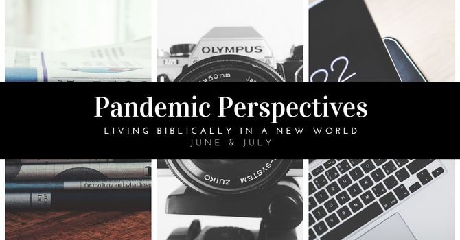 Pandemic Perspectives Series