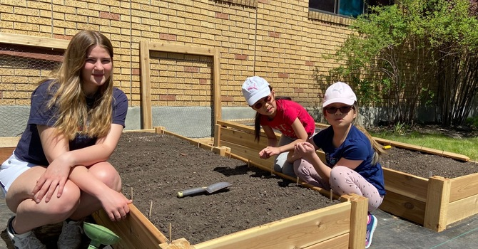 Community Garden Beds Installed! image