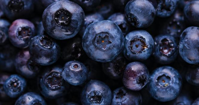 Blueberry Sale 2020: Buy Fresh BC Blueberries here!