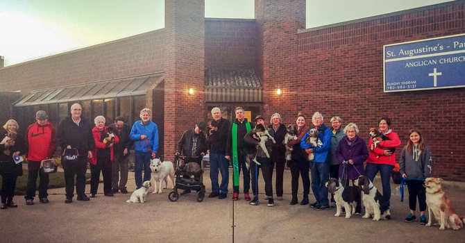 St. Auggie's Pets Blessed During Season of Creation image
