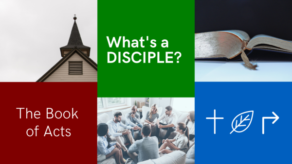 What's a Disciple?