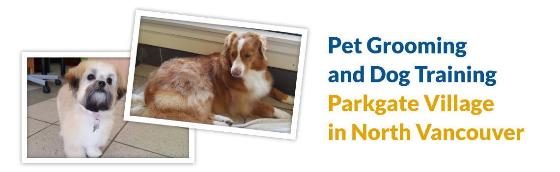 Golden Pet Services