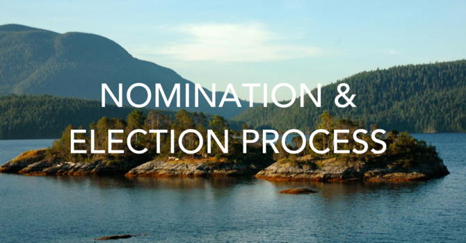 Nominations & Election Process