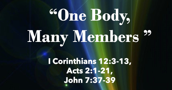 One Body, Many Members