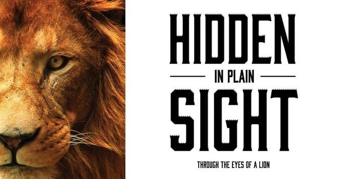 Hidden in Plain Sight - Part 1