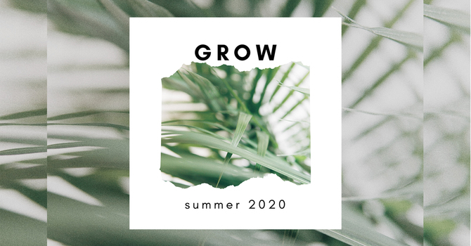 GROW: Summer Sessions image