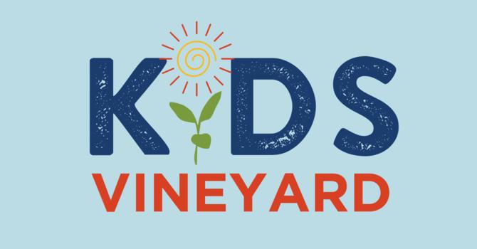 Kid's Vineyard