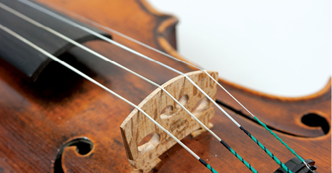 Biber's Mystery Sonatas image