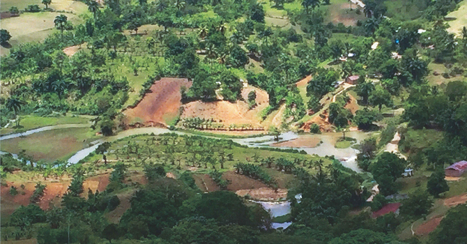 Colourful Calendar Celebrates SJE's Haiti Partnerships image