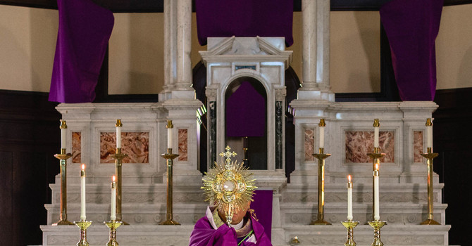 Holy Week Masses - Live Streaming Masses   image