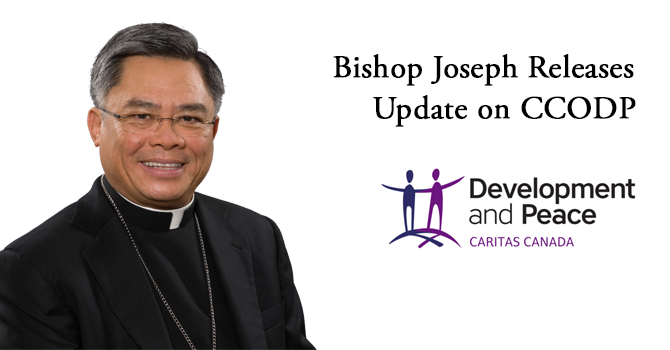 Bishop Joseph's Update on CCODP image