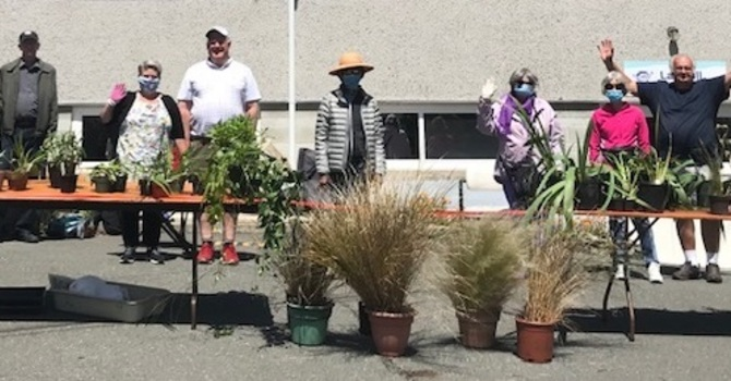 An Update to the Plant Sale Donations Total  image