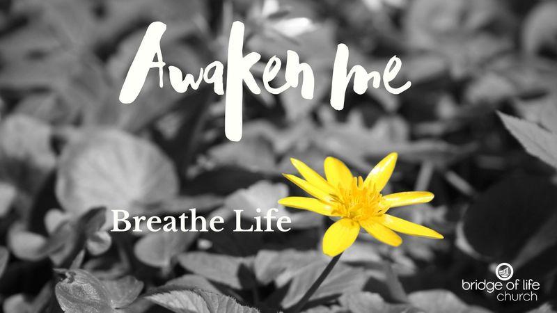 Awaken Me: Breathe Life