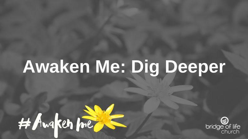 Awaken Me: Dig Deeper