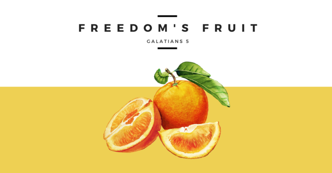 Freedom's Fruit - June 28