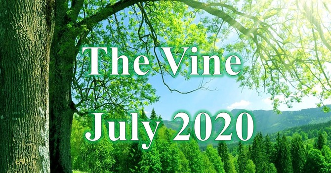 July Vine image