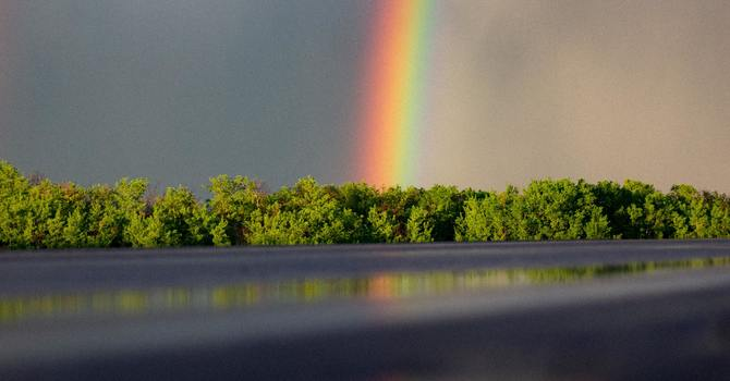 Lessons from a Rainbow image