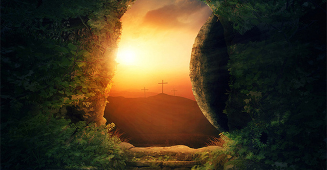 """Part VIII: """"The Resurrection of the body . . . and the life everlasting."""""""