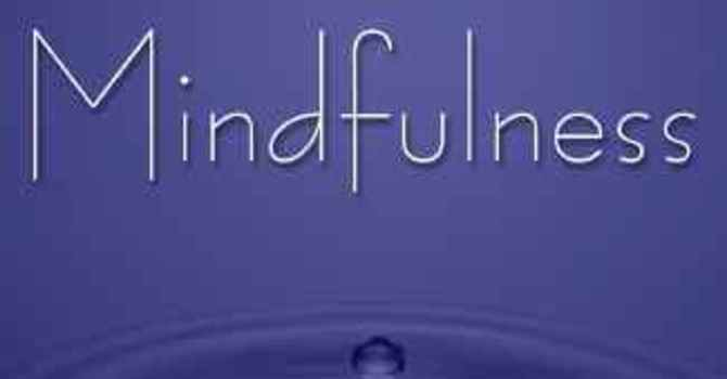 Adult Meditation and Mindfulness