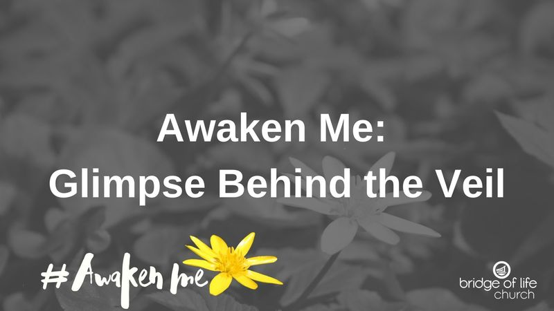 Awaken Me: Glimpse Behind The Veil