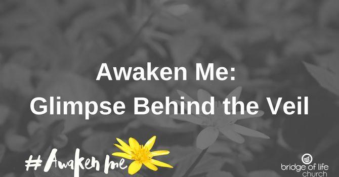 Awaken Me: Glimpse Behind The Veil